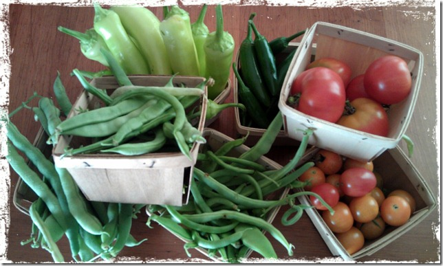 August vegetable harvest photo